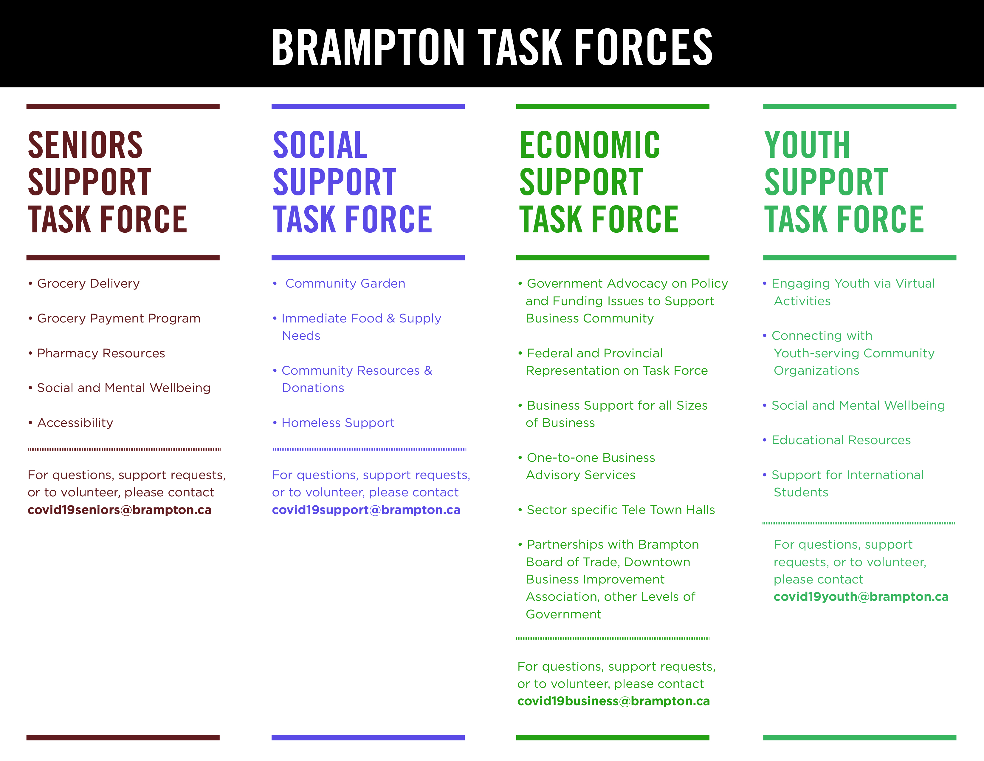 Brampton Task Forces Roles and Responsibilities