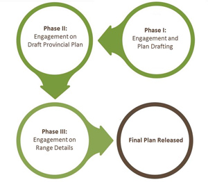 Chart showing three phases of Caribou Range Planning Engagement