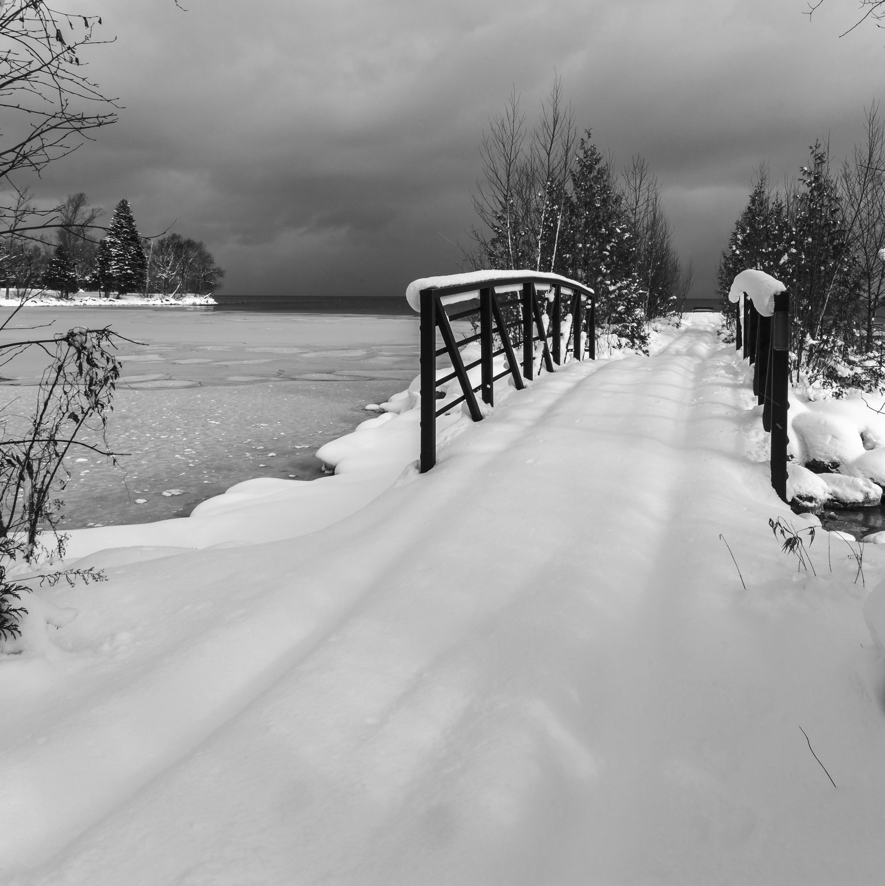 Winter path copy 2