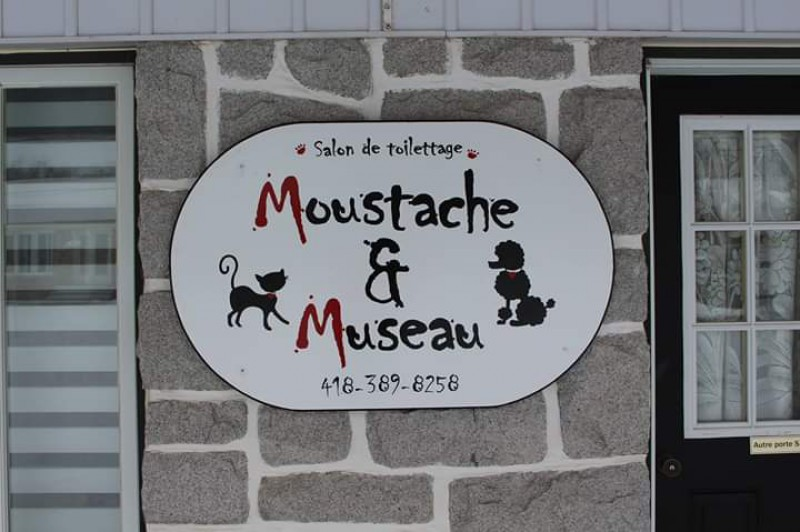 Salon de toilettage Moustache et Museau