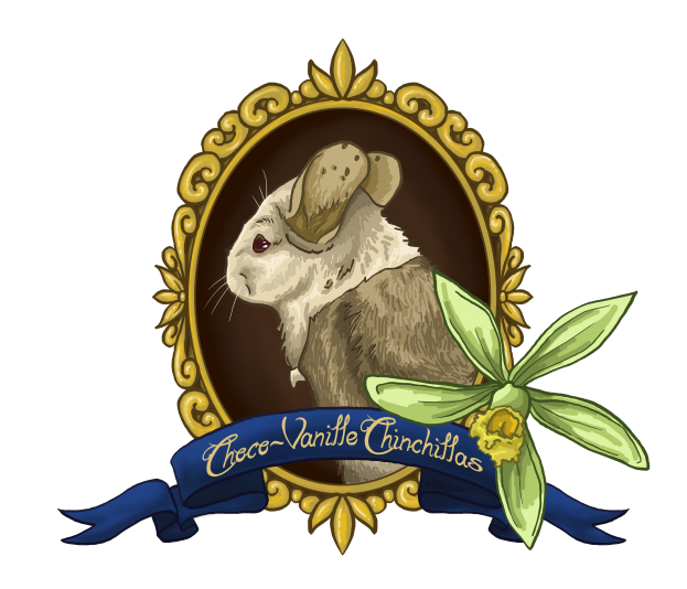 Élevage Choco-Vanille Chinchillas