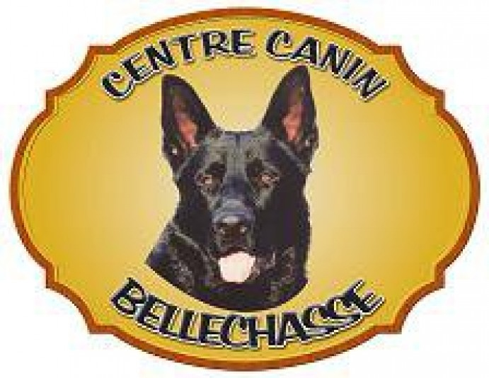 Pension canine Bellechasse