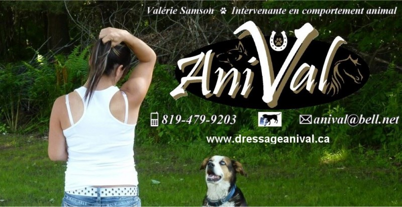 AniVal Éducation canine - Training & animal behaviorist consultants
