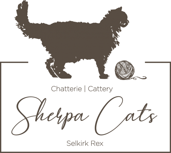 Chatterie Sherpa Cats Cattery