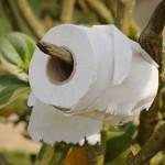 Links to Toilet Talk