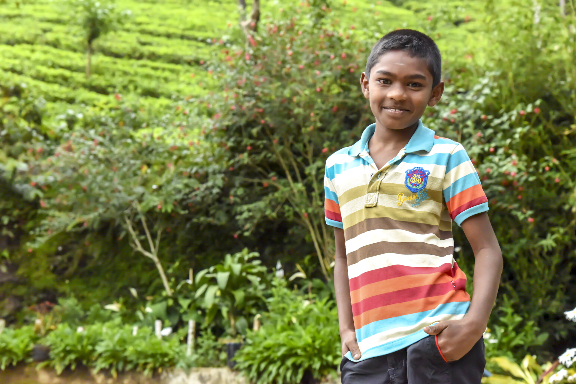 A South Asian boy in a striped polo shirt stands in front of greenery.
