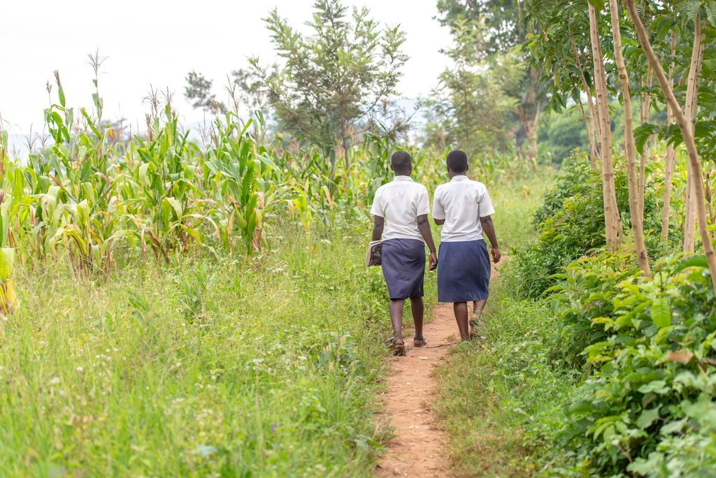 Two girls walk together on a dirt path beside a field to school.