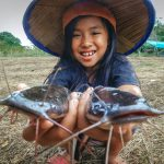 Links to Meet Meisy, the Catfish Farmer