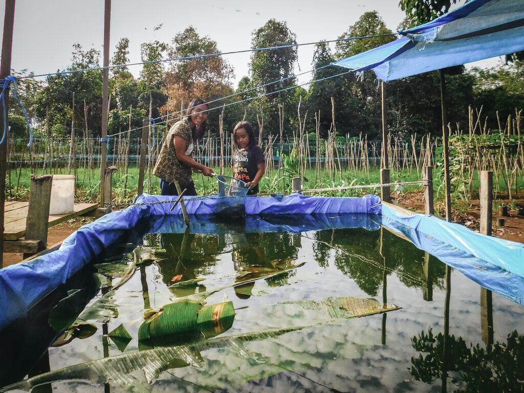 Meisy and her mom are at the end of their fish pond. In the fish pond is water, fish and banana leaves on top