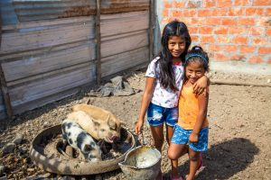 Two little girls are pictured smiling beside 3 pigs.