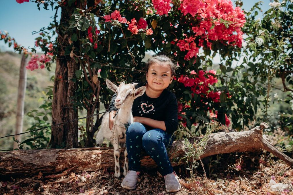 Little girl sits on a log with a goat with blooming red flowers behind.