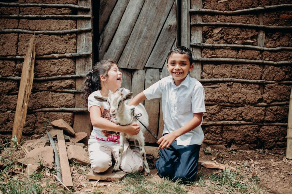 One little girl and one little boy laugh while holding a baby goat