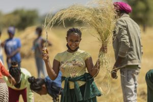 A teenage Ethiopian girl holds up a harvesting tool in one hand and a bunch of harvested wheat in the other. She is smiling and wearing a yellow t-shirt.
