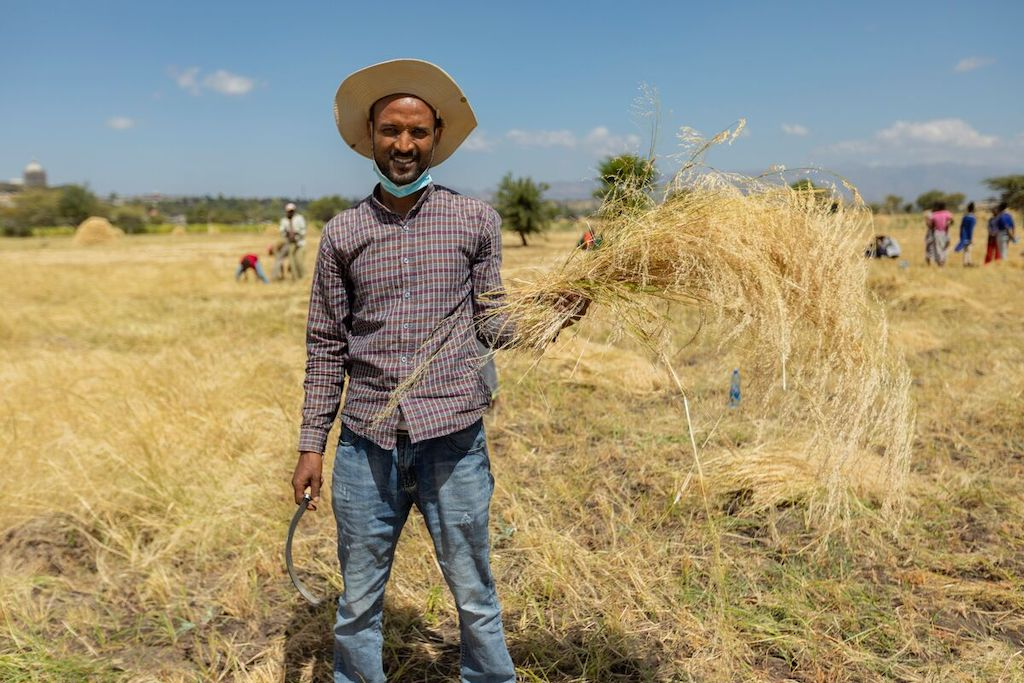 A young man holds a bunch of harvested wheat in one hand and a harvesting tool in the other. He is grinning and squinting against the sun, and wearing a wide-brimmed hat, plaid button-up shirt and jeans.