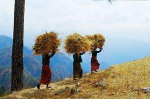 Sejour dans l'himalaya