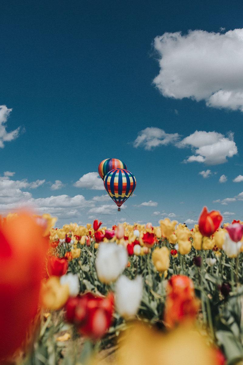 Retrouver la santé montgolfiere