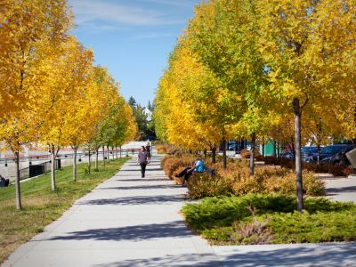 Wide sidewalk with trees and grass on one side and trees and bushes on the other. Fall colours.
