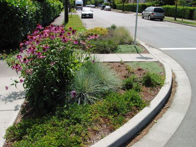Planted curb bubble to calm traffic at crosswalk