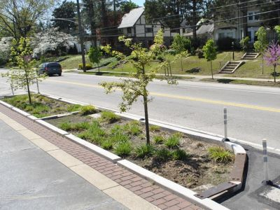 Planters between road and sidewalk to help with drainage