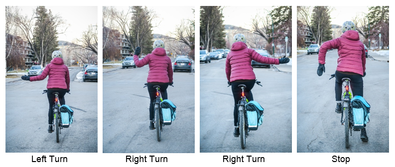 Cyclist from the back in four images showing all newly permitted hand signals with approved bylaw change. Left arm extended left still signals left turn, left arm with bent elbow and hand pointing up signals a right turn and left hand with elbow bend and