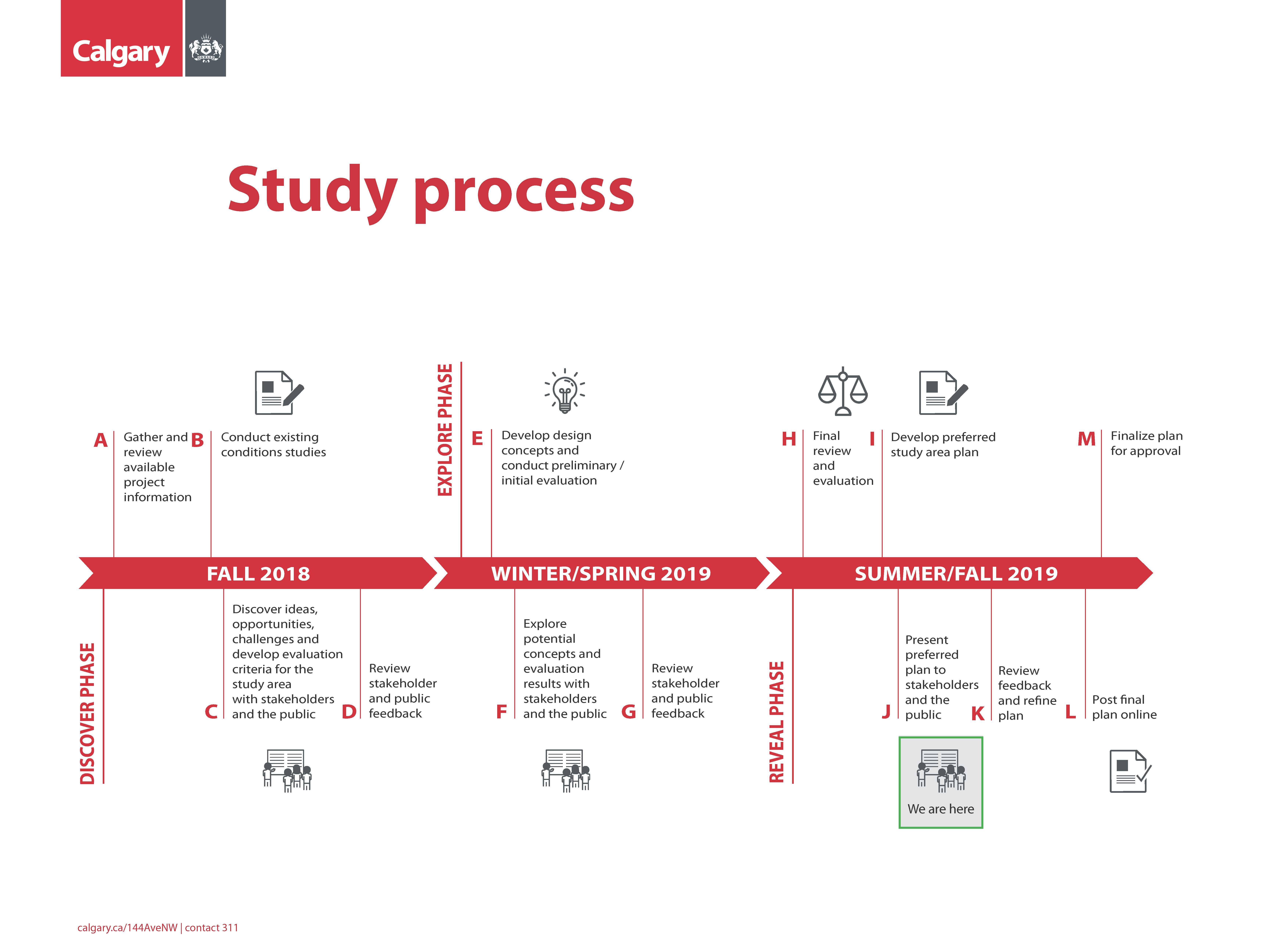 Study Process Timeline