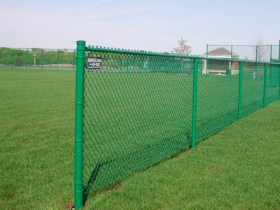 Painted chain link fence