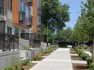 Upgraded sidewalks with street trees
