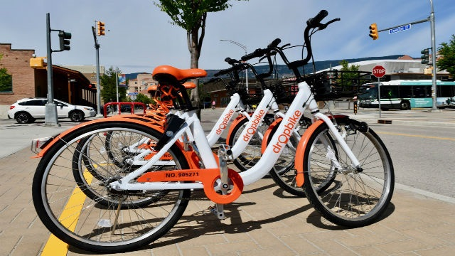 row of white and orange bikes parked on sidewalk in marked area