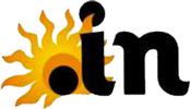 in domain logo
