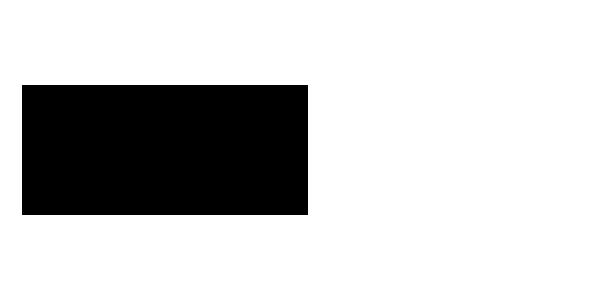 se domain logo