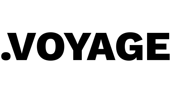 voyage domain logo