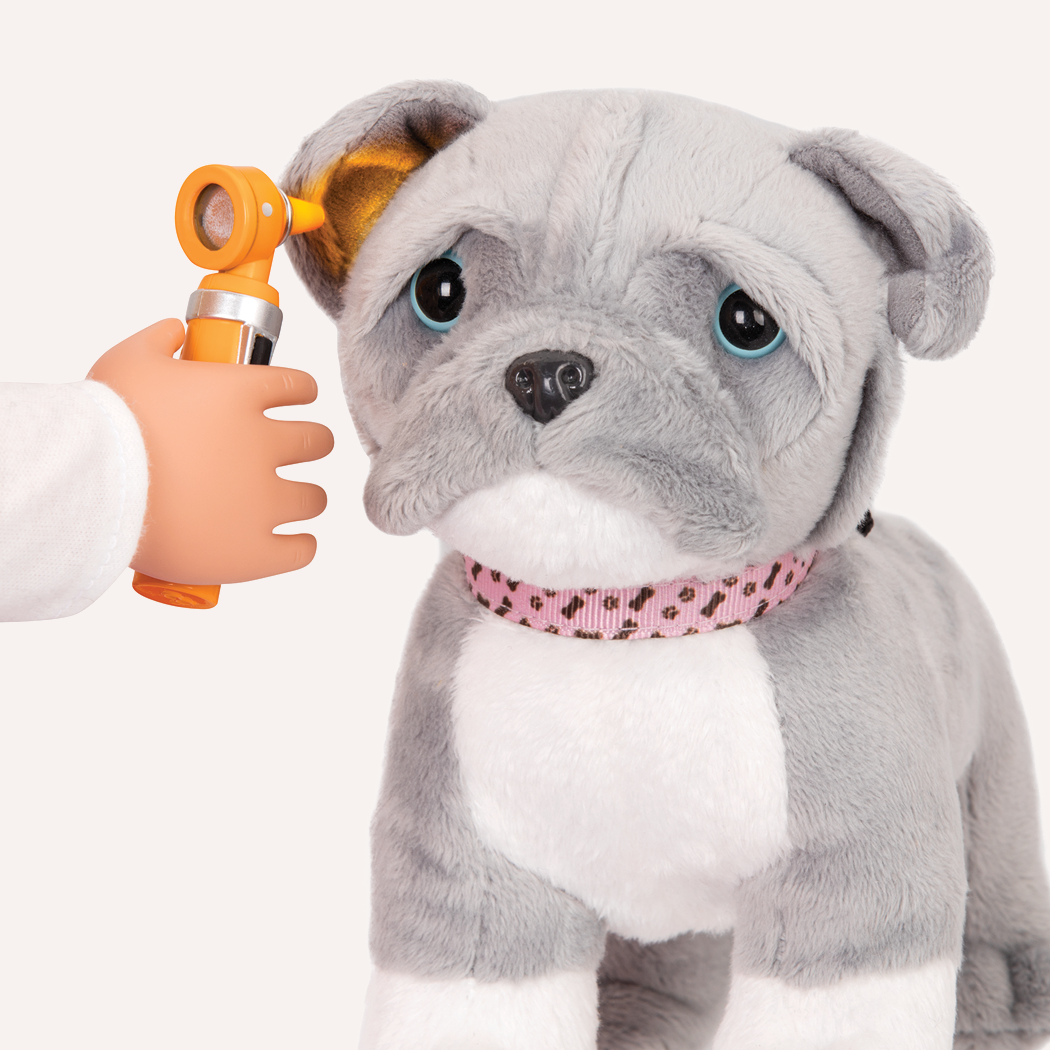 Detail of Pup ear exam