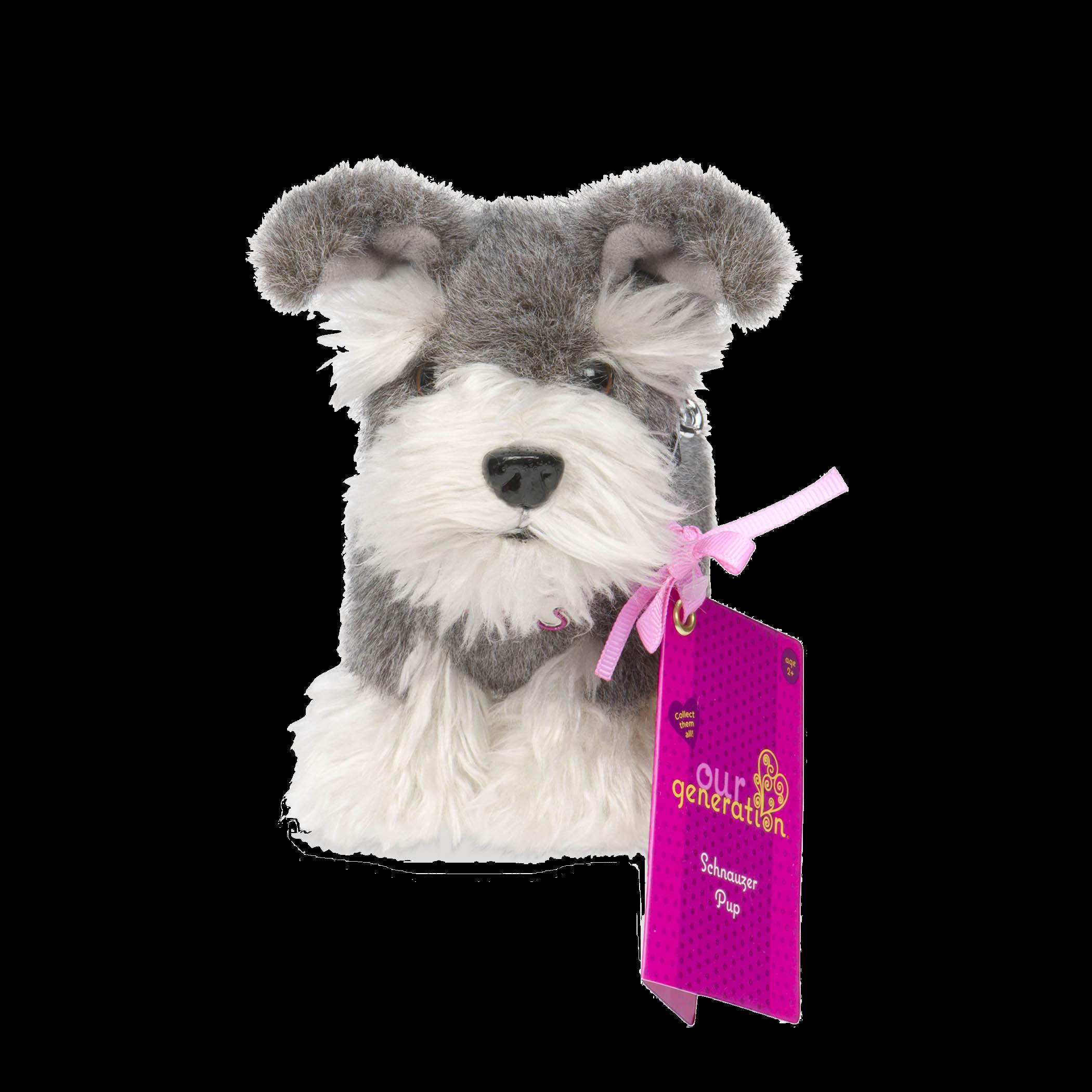 Schnauzer pup package01