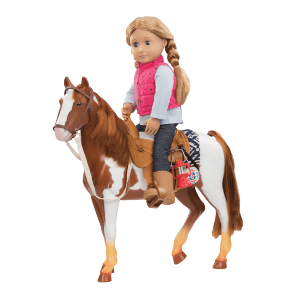 Pinto Horse with Shannon riding