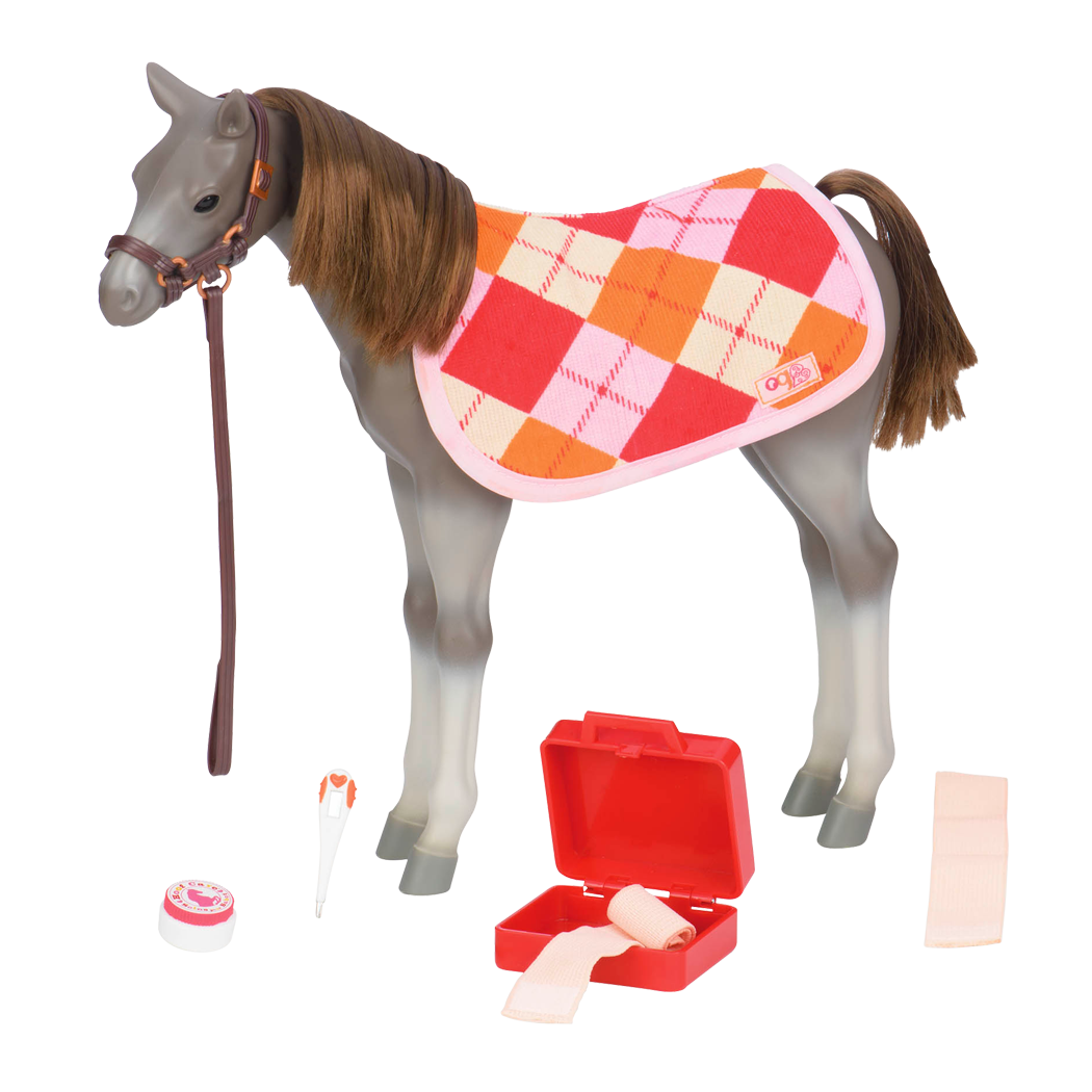 Rocky Mountain Foal all components