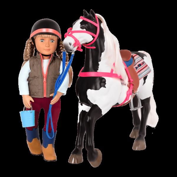American Paint Horse with Lorelei walking