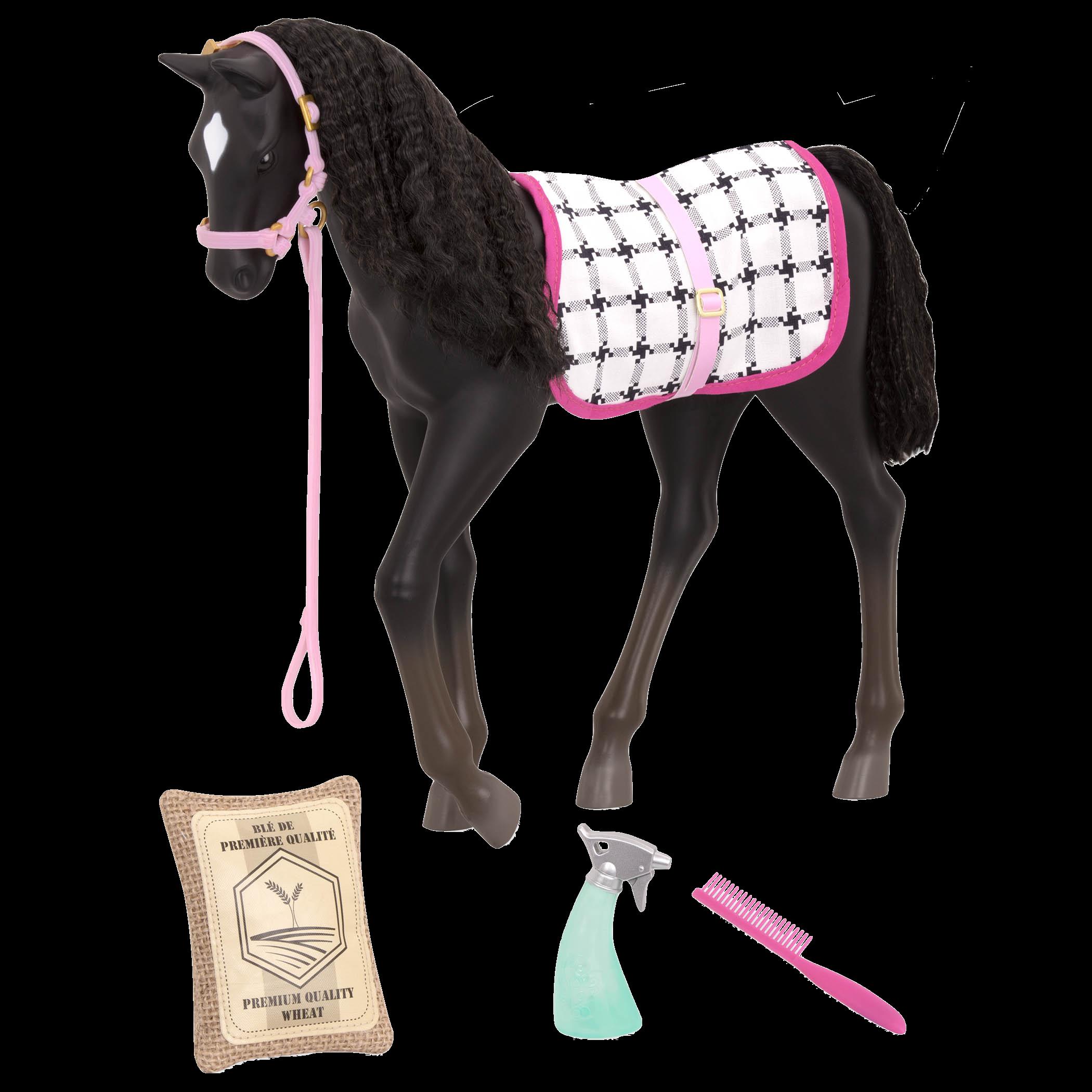 Black Velvet Foal