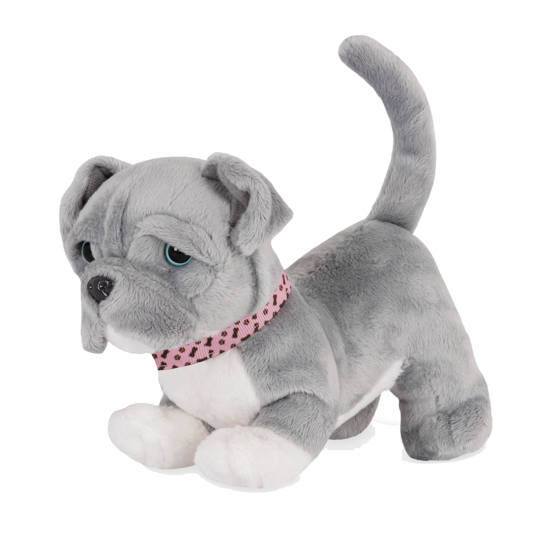 Pitbull Pup with front paws bent