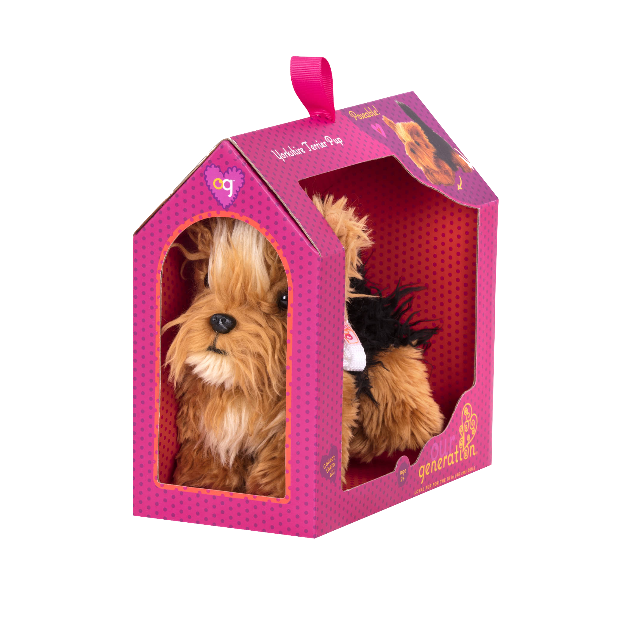 package detail for Yorkshire Terrier Pup