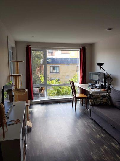 Colocation proche du parc Lafontaine | WeMoove Apartments