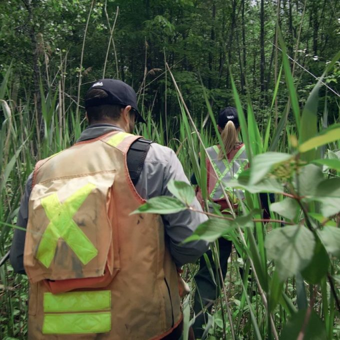 Environment - People walking in swamp through cattails