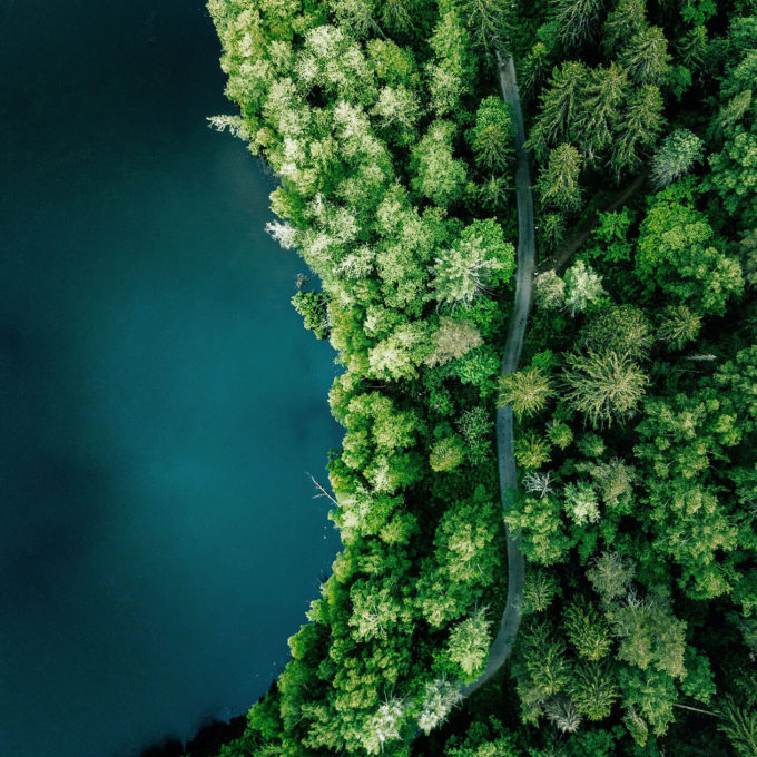 Environment - Lake with forest - Annual report 2020