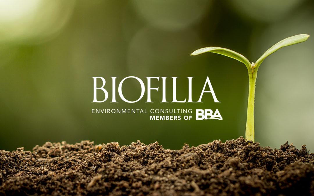 News Biofilia EN