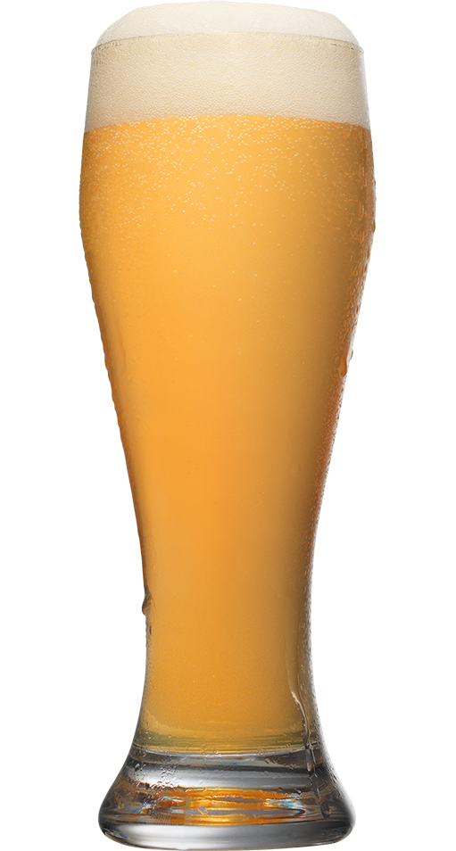 Radler orange 511x954