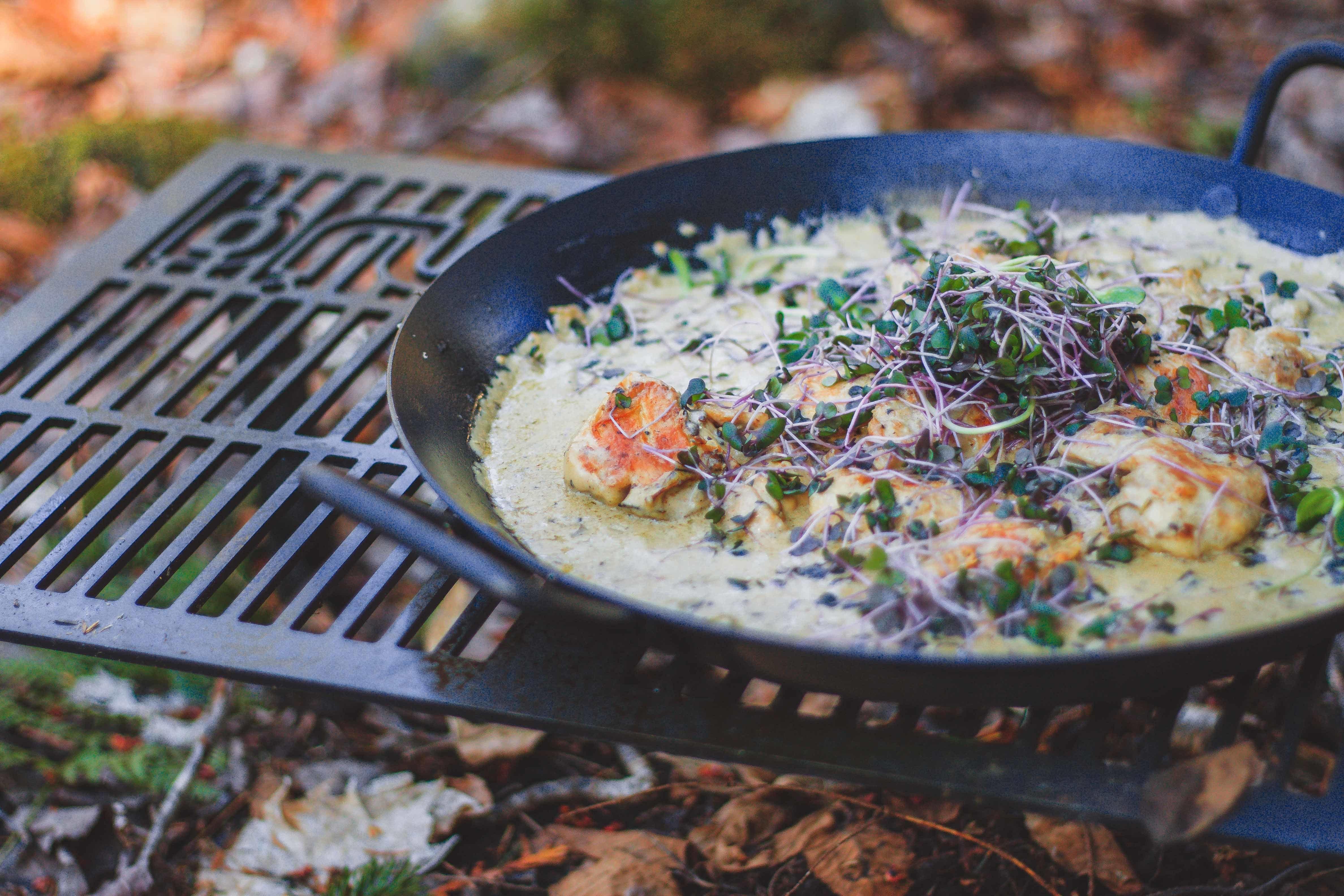 Hauts de cuisse flambes a la creme de champignons IMG 9431