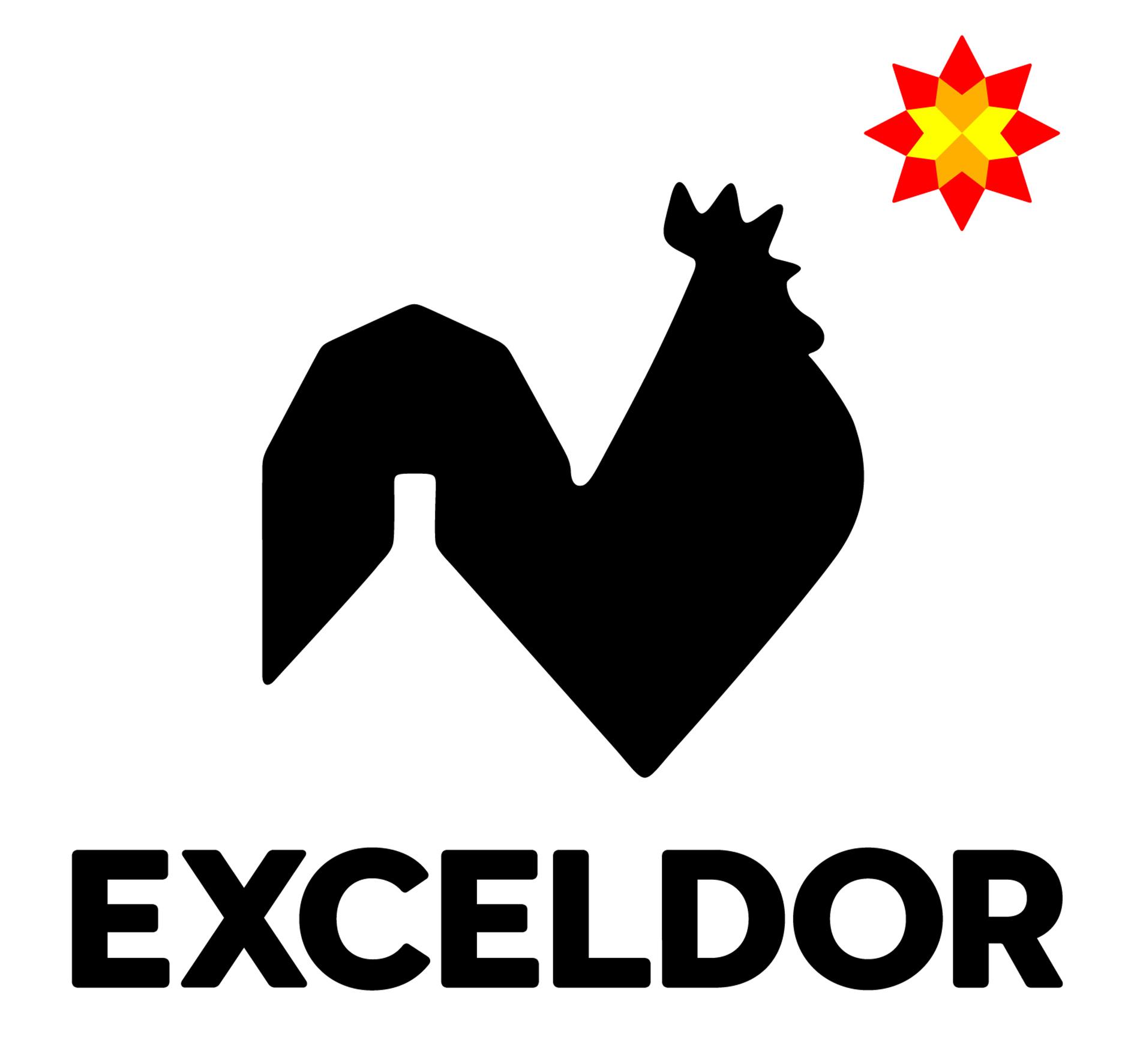 Logo Exceldor