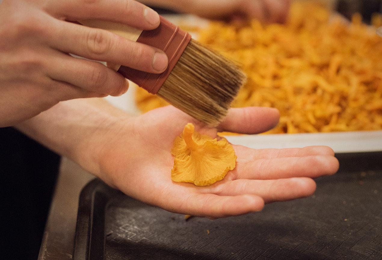 Champignons En Action Cuisine Signe Toque