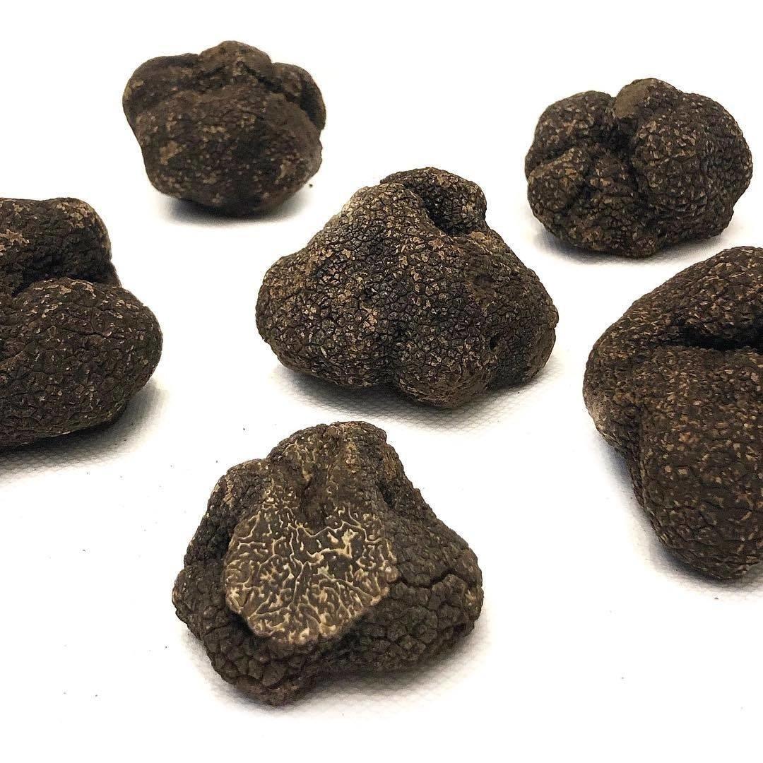 Truffes-noires-drome