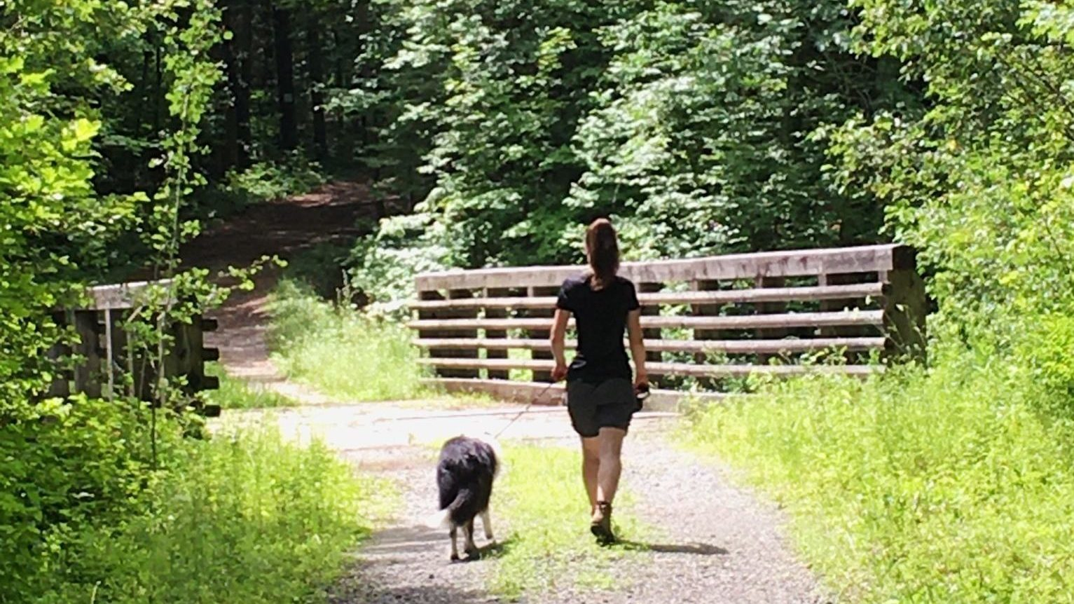 A girl and a leashed dog on a Gatineau Park trail