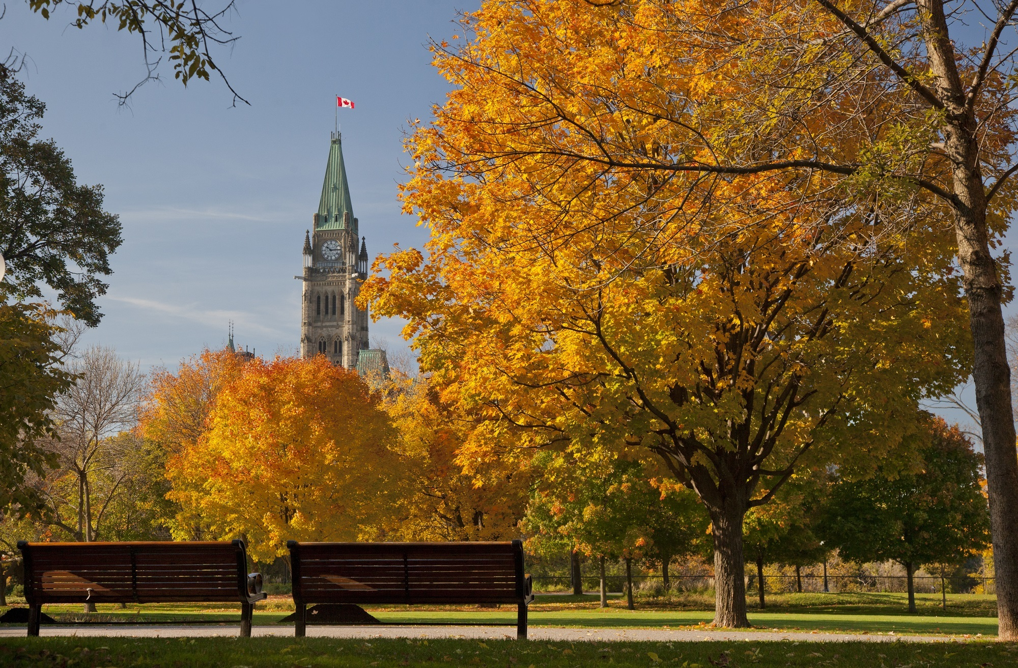 Major's Hill Park during Fall Rhapsody. Benches and trees with oranges leaves in the foreground and Parliament Hill in the background.
